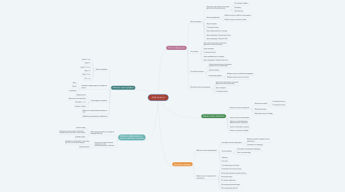 Mind Map: 2GIS Android