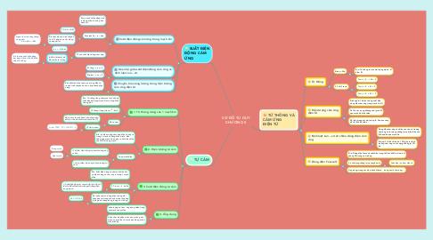 Mind Map: SƠ ĐỒ TƯ DUY CHƯƠNG 5