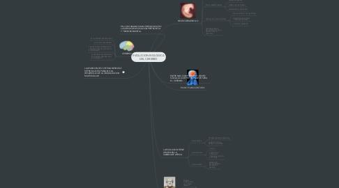 Mind Map: EVOLUCION BIOLOGICA DEL CEREBRO