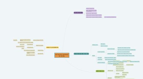 Mind Map: DICTADURA DE PRIMO DE RIVERA