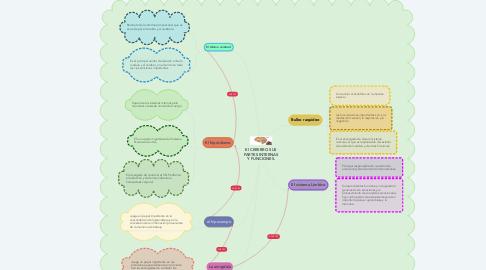 Mind Map: El CEREBRO SUS PARTES INTERNAS Y FUNCIONES.