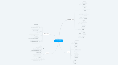 Mind Map: EVENEMENTEN