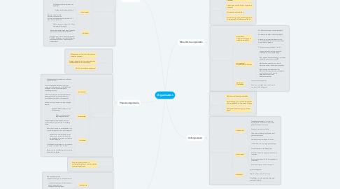 Mind Map: Organisaties