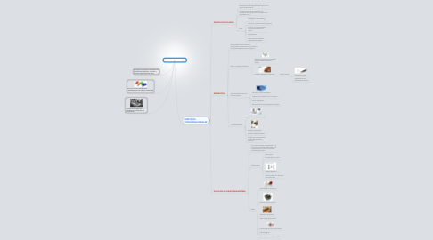 Mind Map: CONVERSACIONES