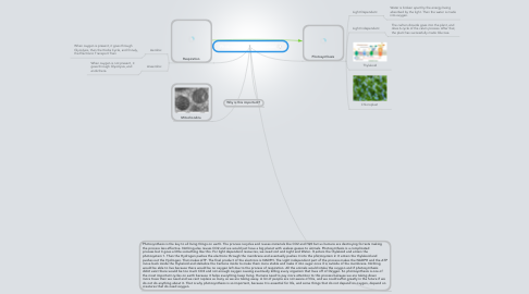 Mind Map: Photosynthesis & Respiration
