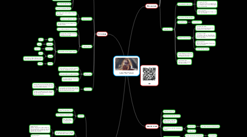 Mind Map: Luke The Person