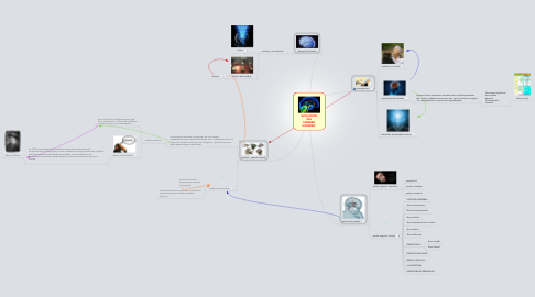 Mind Map: EVOLUCION DEL CEREBRO HUMANO.