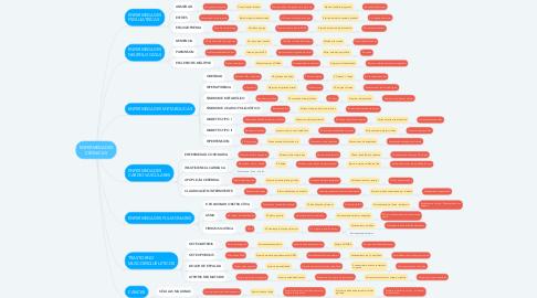 Mind Map: ENFERMEDADES CRÓNICAS