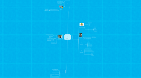 Mind Map: JUEGO