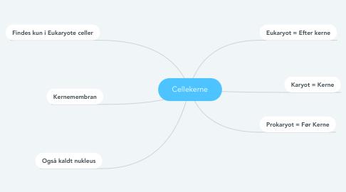 Mind Map: Cellekerne