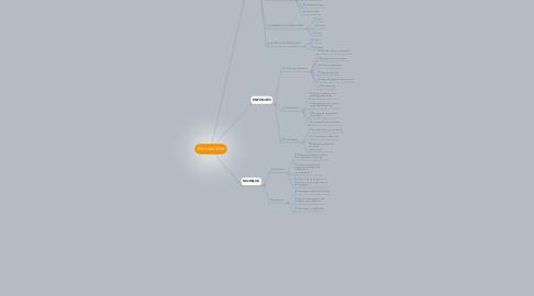 Mind Map: EVALUACION