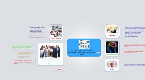 Mind Map: evolucion del celebro humano comparado con la evolucion en otros seres