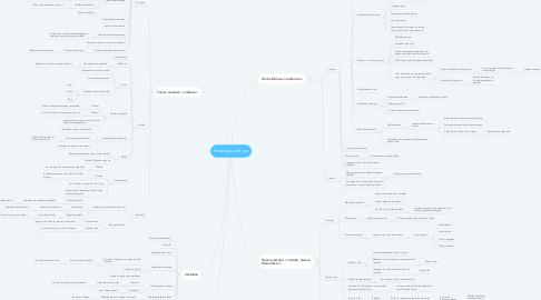 Mind Map: Histología del ojo