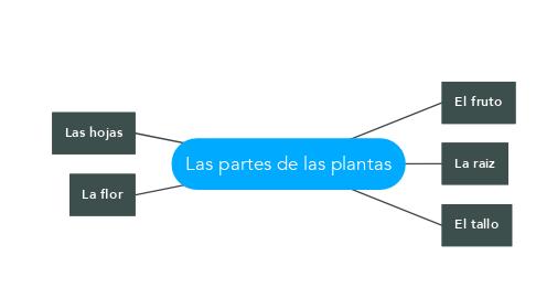 Mind Map: Las partes de las plantas