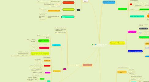Mind Map: ESTUDIO DE LAS POLÍTICAS PÚBLICAS