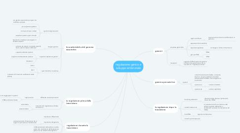 Mind Map: regolazione genica e sviluppo embrionale