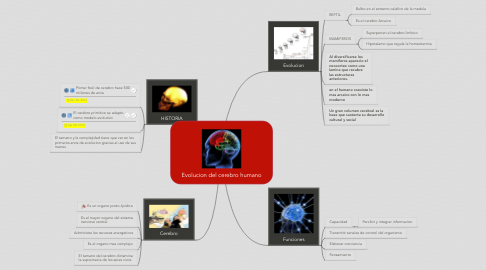 Mind Map: Evolucion del cerebro humano