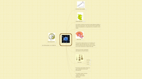 Mind Map: Cerebro