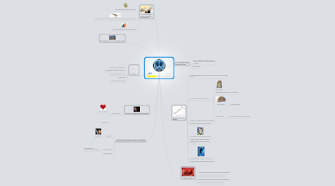 Mind Map: Copy of CEREBRO