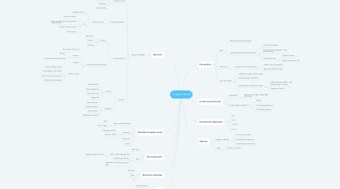 Mind Map: Impacto Social
