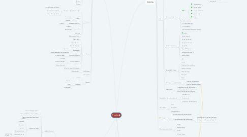 Mind Map: Pupilo
