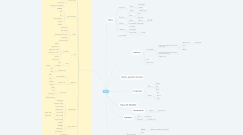 Mind Map: PLASVALE