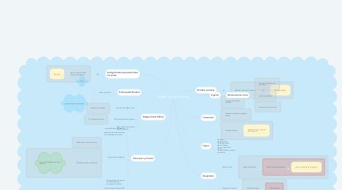 Mind Map: TUBERCULOSIS BOVINA