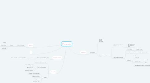 Mind Map: L'impresa.