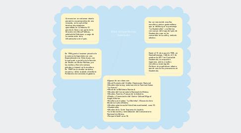 Mind Map: Efraín Enrique Recinos Valenzuela