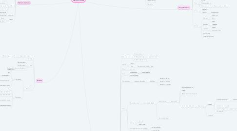 Mind Map: HELMINTOS