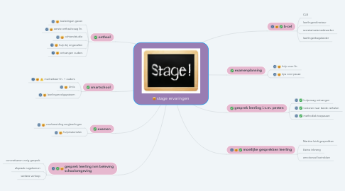 Mind Map: stage ervaringen