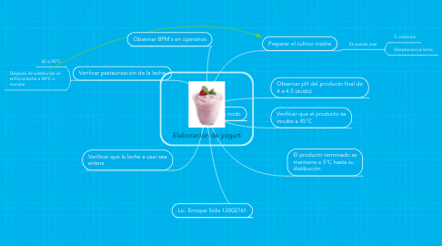 Mind Map: Elaboracion de yogurt
