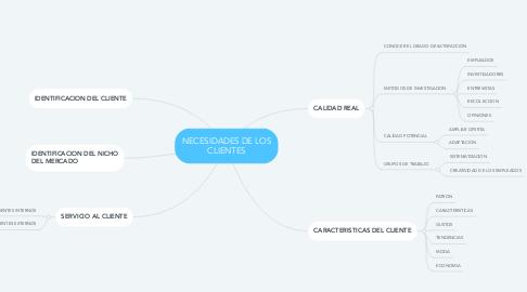 Mind Map: NECESIDADES DE LOS CLIENTES