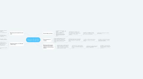 Mind Map: Виртуальный колледж Рукодельного бизнеса