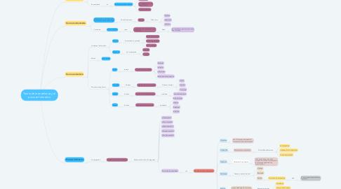 Mind Map: Teoría de la enseñanza y el proceso formativo