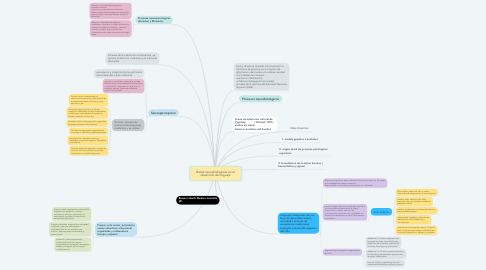 Mind Map: Bases neurobiologicas en el desarrollo del leguaje