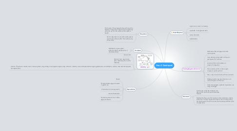 Mind Map: Hour 2 Gastropod