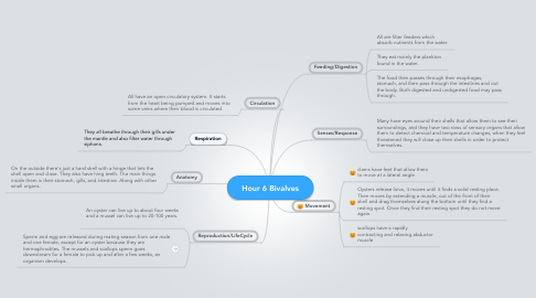 Mind Map: Hour 6 Bivalves