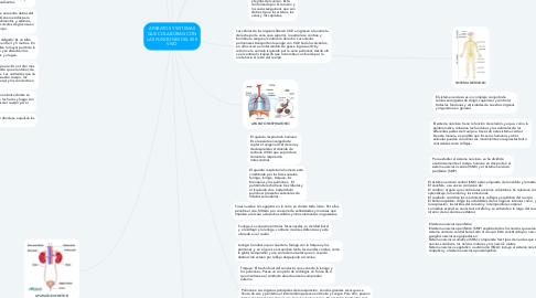 Mind Map: APARATOS Y SISTEMAS QUE COLABORAN CON LAS FUNCIONES DEL SER VIVO