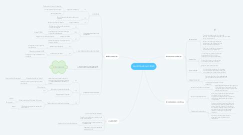 Mind Map: Audit Qualicert 2020