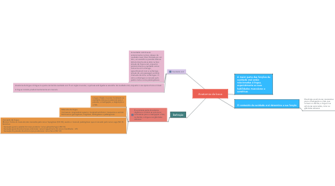 Mind Map: CITOESQUELETO