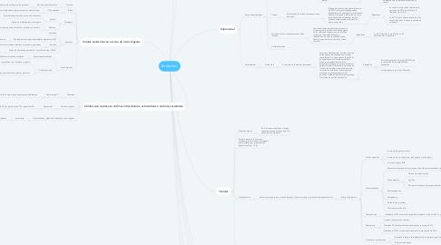 Mind Map: Endocrino