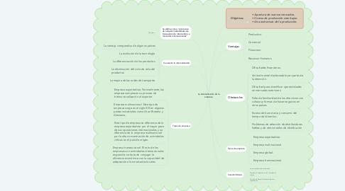Mind Map: La internalización de la empresa