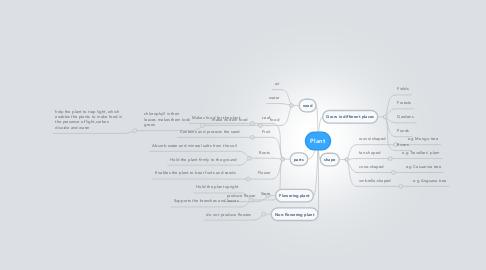 Mind Map: Plant