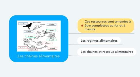Mind Map: Les chaines alimentaires