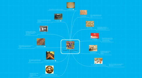Mind Map: Proceso de elaboracion decereales
