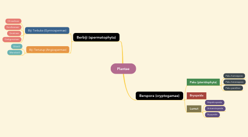Mind Map: Plantae