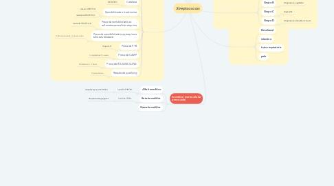 Mind Map: Streptococcus
