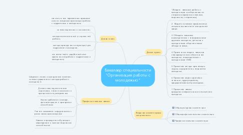 """Mind Map: Бакалавр специальности """"Организация работы с молодежью"""""""