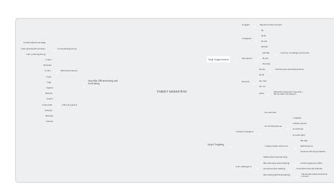 Mind Map: TARGET MARKETING